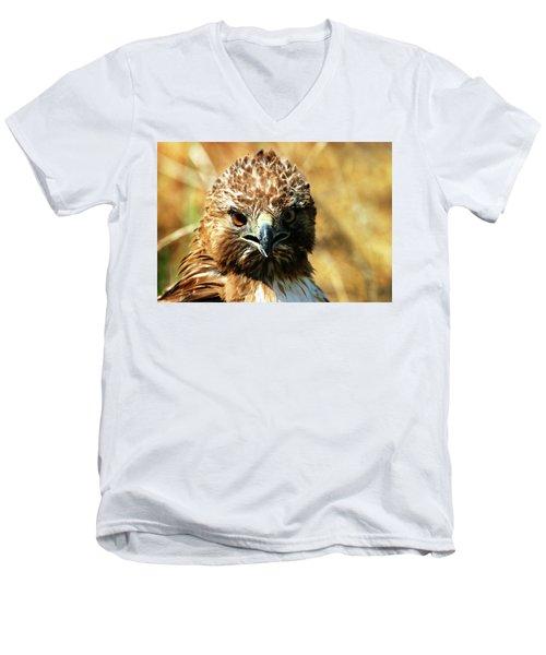 Redtail Hawk Men's V-Neck T-Shirt