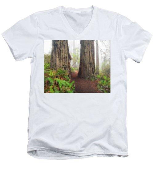 Redwood Trail Men's V-Neck T-Shirt