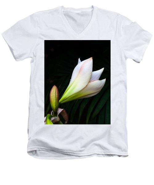 Refined Elegance Men's V-Neck T-Shirt