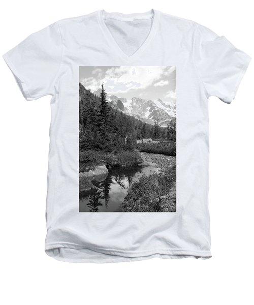 Reflected Pine Men's V-Neck T-Shirt