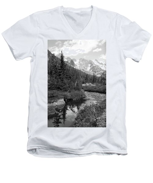 Reflected Pine Men's V-Neck T-Shirt