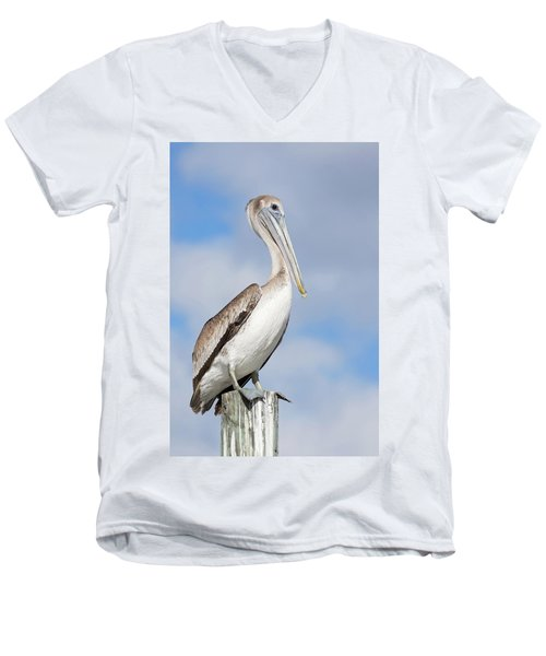 Regal Bird Men's V-Neck T-Shirt