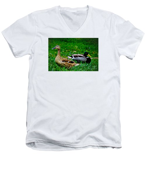 Men's V-Neck T-Shirt featuring the photograph Resting Ducks by Mariola Bitner