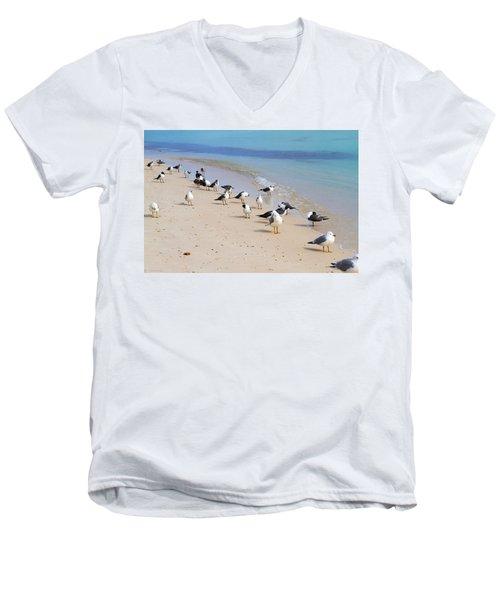 Rhapsody In Seabird Men's V-Neck T-Shirt