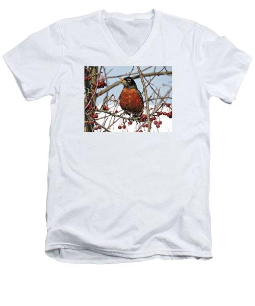 Robin In Winter Men's V-Neck T-Shirt by Marcia Lee Jones