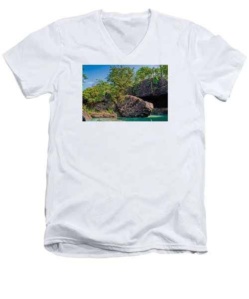 Rock And Trees Men's V-Neck T-Shirt