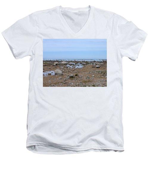 Rocky Shore Men's V-Neck T-Shirt