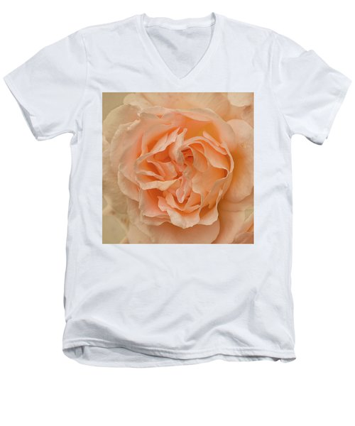 Romantic Rose Men's V-Neck T-Shirt by Jacqi Elmslie