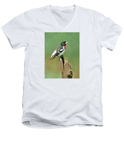 Rose Breasted Grosbeak Men's V-Neck T-Shirt