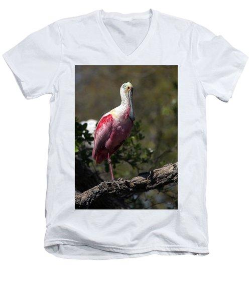 Roseate Spoonbill Men's V-Neck T-Shirt by Lamarre Labadie