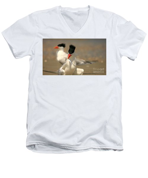 Royal Tern Catch Men's V-Neck T-Shirt