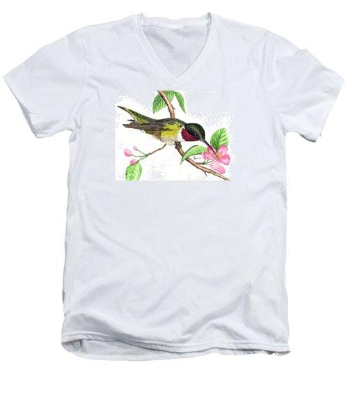 Ruby-throated Hummingbird Men's V-Neck T-Shirt