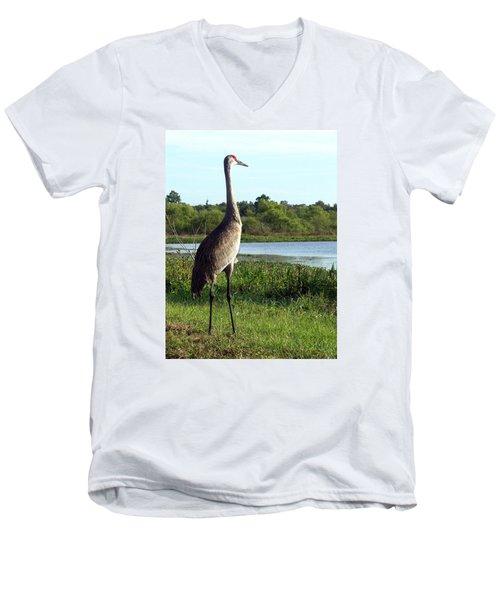 Sandhill Crane 019 Men's V-Neck T-Shirt by Chris Mercer