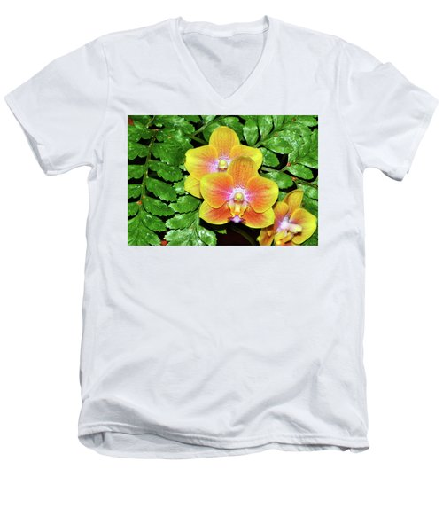 Sara Gold Orchids 003 Men's V-Neck T-Shirt