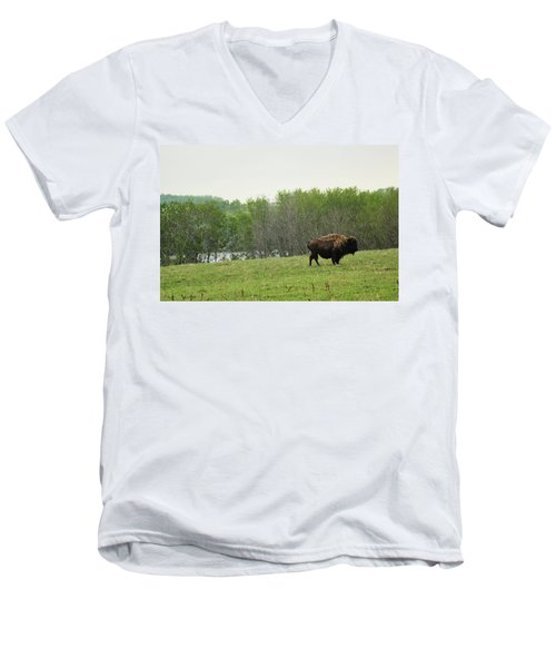 Men's V-Neck T-Shirt featuring the photograph Saskatchewan Buffalo by Ryan Crouse