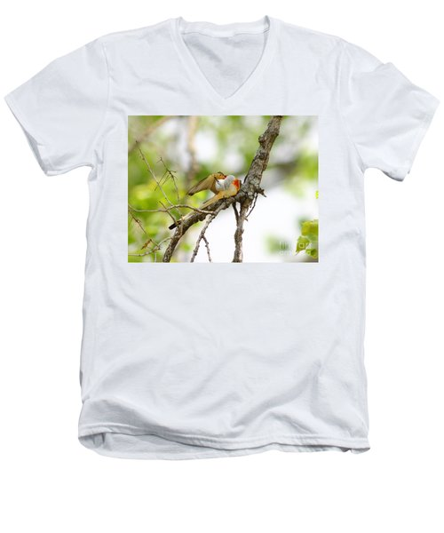 Scissortail Ballet Men's V-Neck T-Shirt