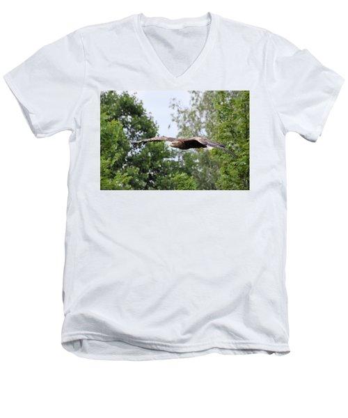 Sea Eagle Men's V-Neck T-Shirt