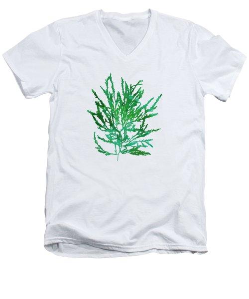 Men's V-Neck T-Shirt featuring the mixed media Sea Green Seaweed Art Odonthalia Dentata by Christina Rollo