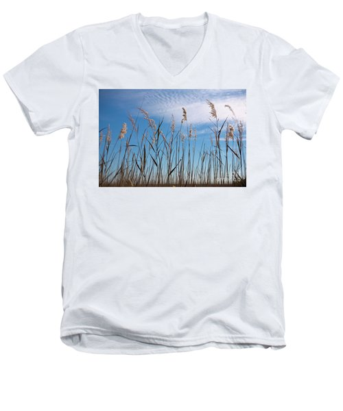 Sea Oats And Sky On Outer Banks Men's V-Neck T-Shirt by Dan Carmichael