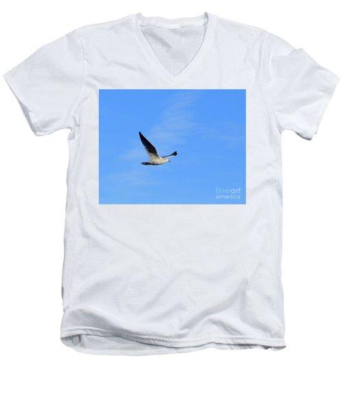 Seagull In Flight Men's V-Neck T-Shirt