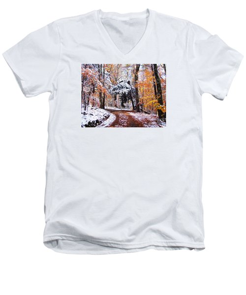 Seasons Cross Men's V-Neck T-Shirt by Betsy Zimmerli