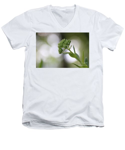 Sedum Buds At Late Evening Men's V-Neck T-Shirt by Marilyn Carlyle Greiner