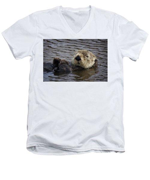 See Otter Posing Men's V-Neck T-Shirt