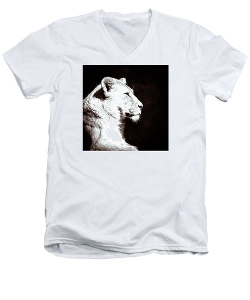 Men's V-Neck T-Shirt featuring the photograph Seeing Double II by Wade Brooks