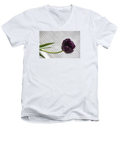 Seeking The Light Men's V-Neck T-Shirt by Morris  McClung