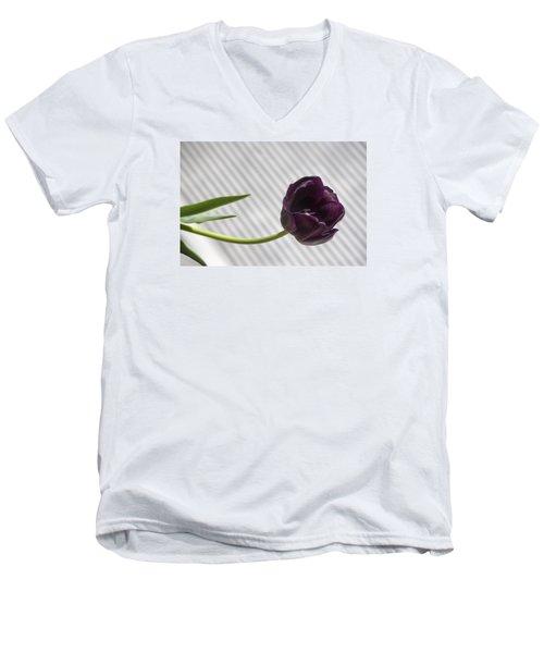 Seeking The Light Men's V-Neck T-Shirt