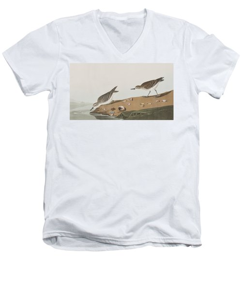 Semipalmated Sandpiper Men's V-Neck T-Shirt by John James Audubon