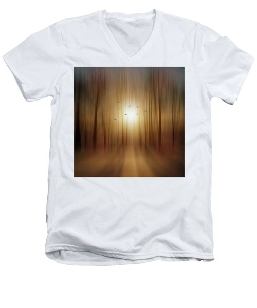 Setting Sun Men's V-Neck T-Shirt