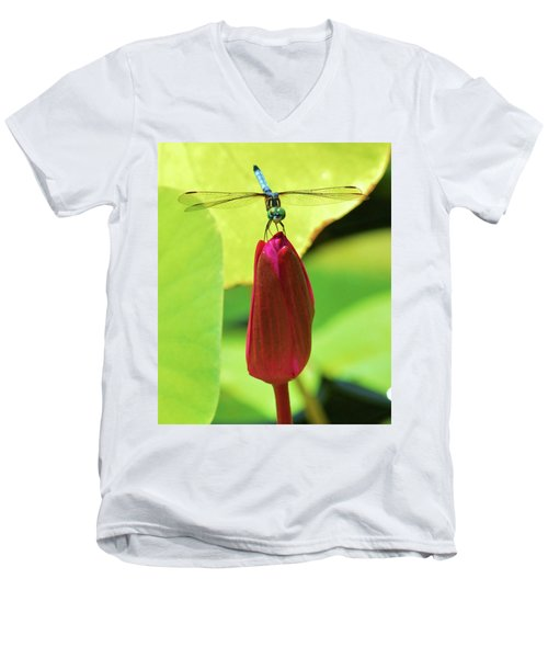 Settled Dragonfly Men's V-Neck T-Shirt