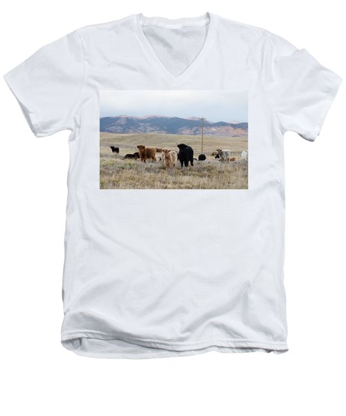 Men's V-Neck T-Shirt featuring the photograph Shaggy-coated Cattle Near Jefferson by Carol M Highsmith