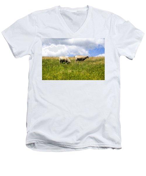 Sheep In New Zealand Men's V-Neck T-Shirt