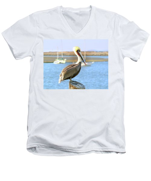 Shy Brown Pelican Men's V-Neck T-Shirt by Haleh Mahbod