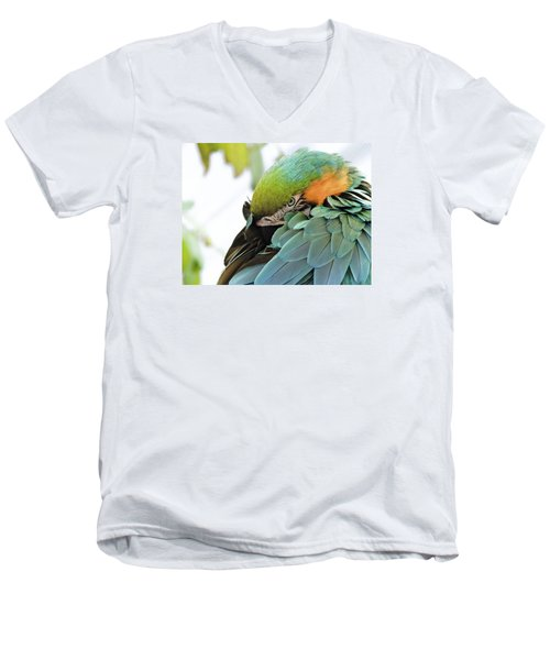 Shy Macaw Men's V-Neck T-Shirt by Penny Lisowski
