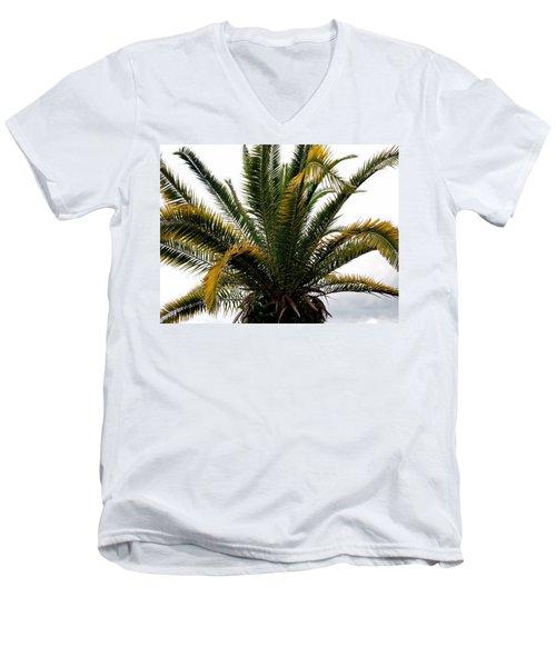 Sideshow Palm Men's V-Neck T-Shirt