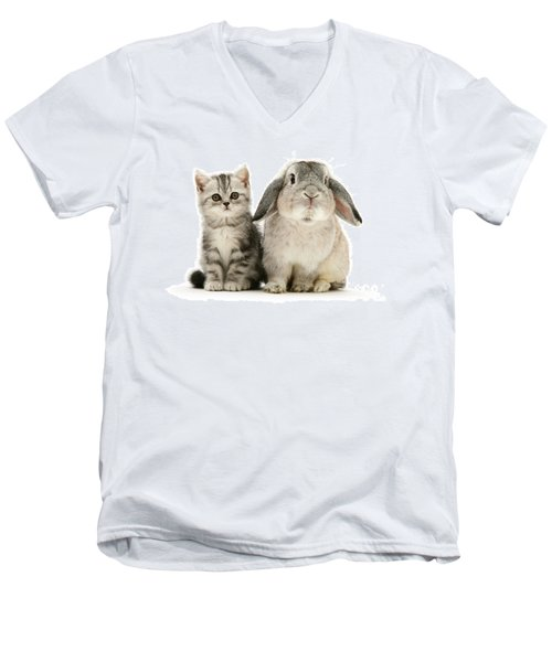 Silver Tabby And Rabby Men's V-Neck T-Shirt