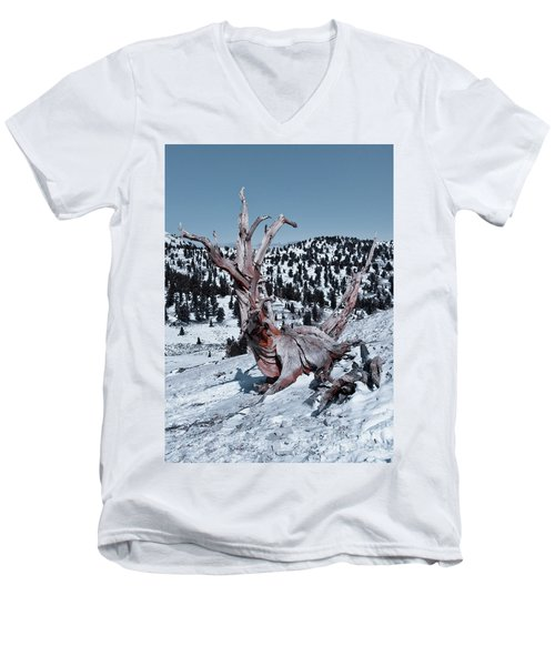 Men's V-Neck T-Shirt featuring the photograph Skating Pine by Mae Wertz