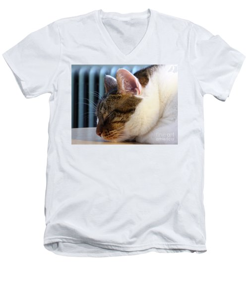 Sleeping Cat Men's V-Neck T-Shirt