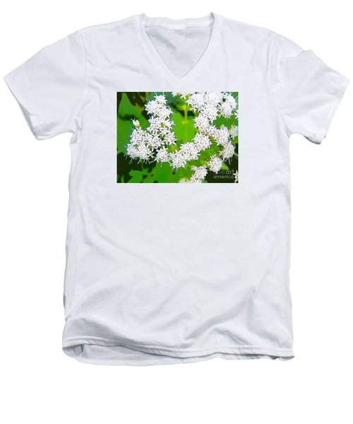 Small White Flowers Men's V-Neck T-Shirt by Craig Walters