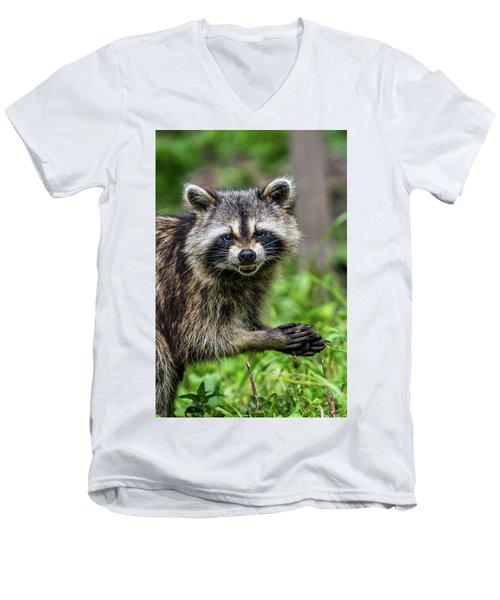 Smiling Raccoon Men's V-Neck T-Shirt by Paul Freidlund