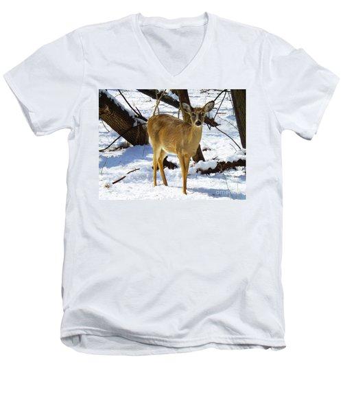 Snow Angel Men's V-Neck T-Shirt