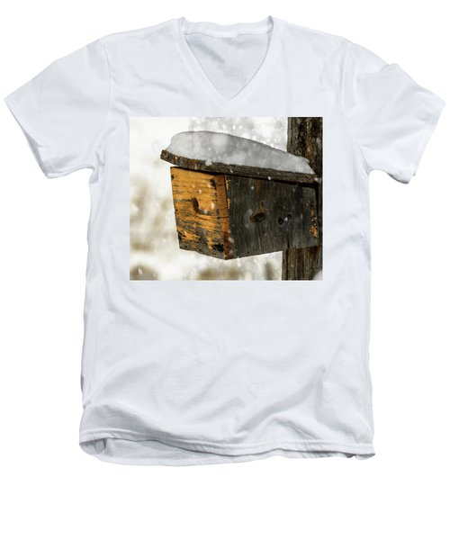 Snow Cover Men's V-Neck T-Shirt by Sherman Perry