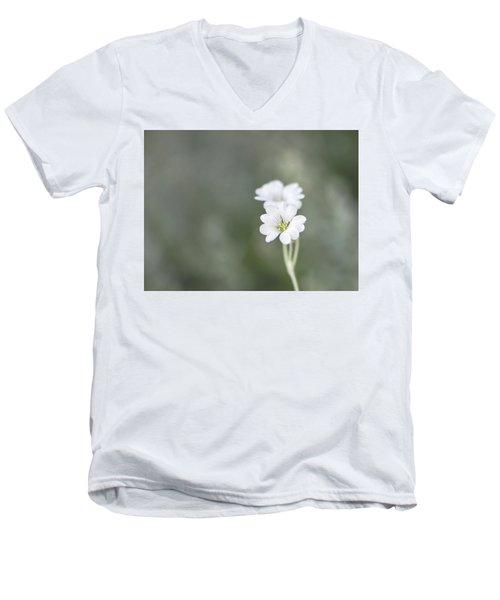 Snow In Summer Men's V-Neck T-Shirt