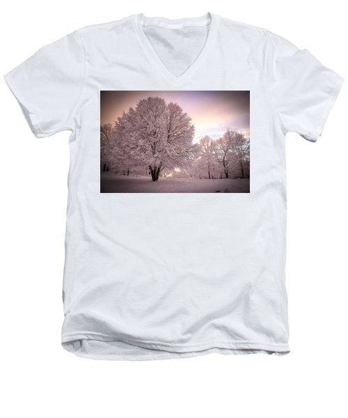 Snow Tree At Dusk Men's V-Neck T-Shirt