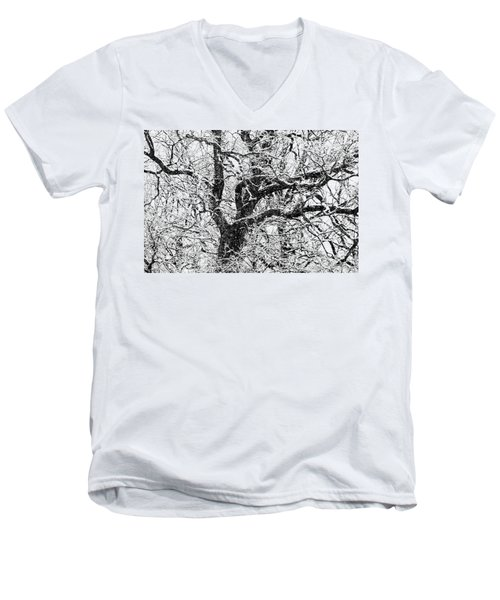 Snowy Oak Men's V-Neck T-Shirt