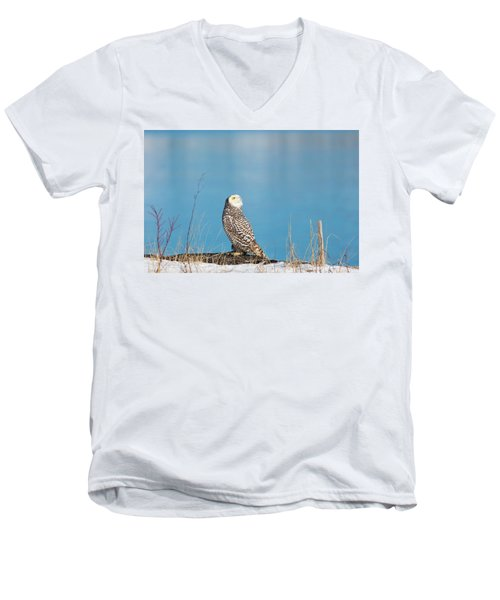 Snowy Watching A Plane Men's V-Neck T-Shirt