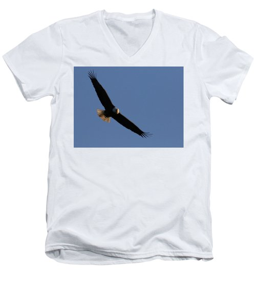 Soaring Eagle Men's V-Neck T-Shirt by Brook Burling